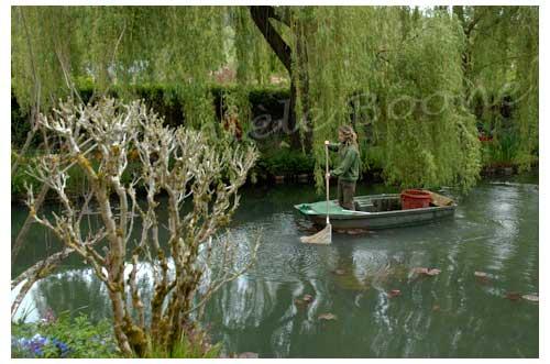 Un jardinier nettoie le plan d'eau © Danièle Boone