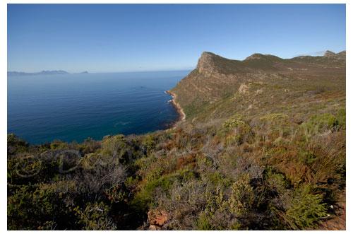 Réserve naturelle su Cap de Bonne Espérance