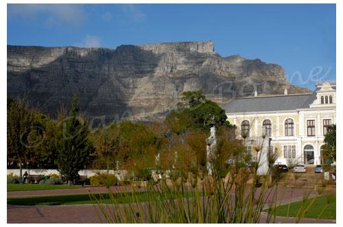 Table Mountain depuis les jardins de la Compagnie © Danièle Boone