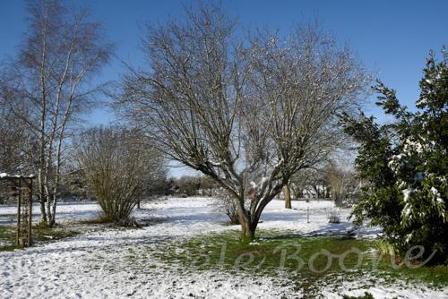 fonte neige