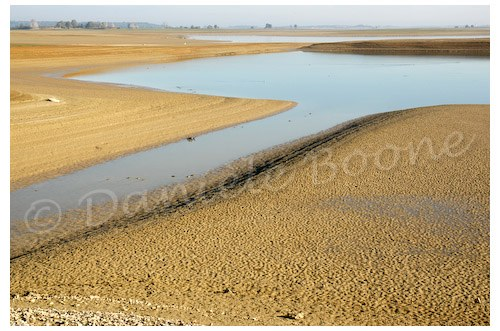 Lac du Der Chantecoq