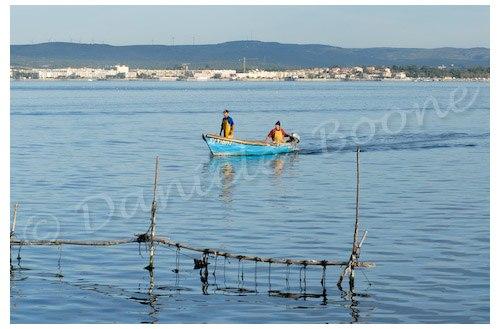 Sète - l'étang de Thau depuis la Pointe Courte