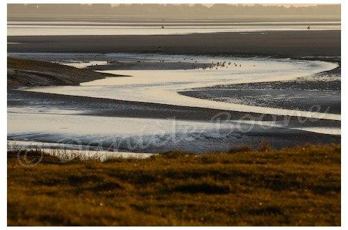 L'estuaire de la Somme au petit matin depuis la pointe du Hourdel