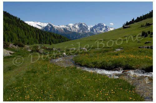 Le vallon d'Orgères - Parc national de la Vanoise