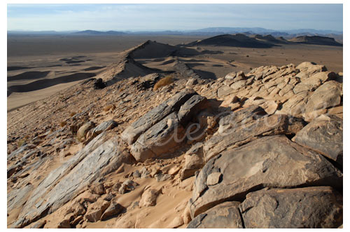 Desert © Danièle Boone