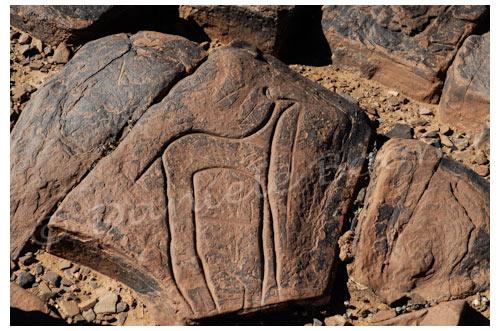 Gravure rupestre © Danièle Boone