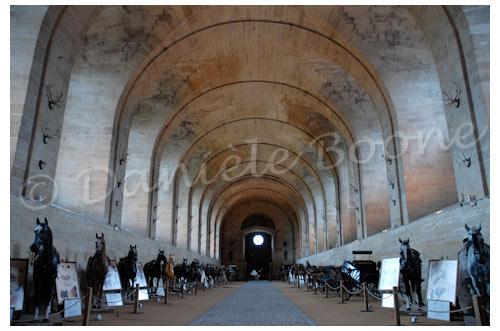 Château de Chantilly - Grandes écuries © Danièle Boone