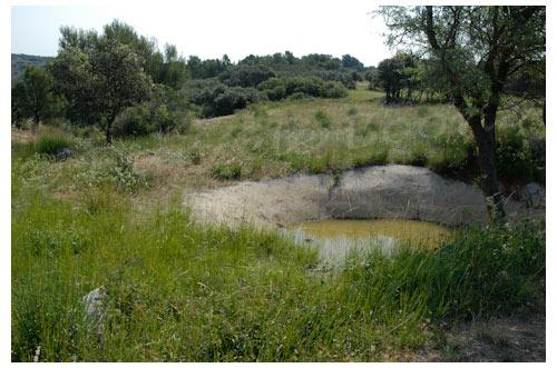 Une lavogne, réservoir d'eau destiné à l'origine aux moutons © Danièle Boone