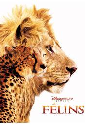 """Affiche du film """"Félins"""" © The Walt Disney Company France"""
